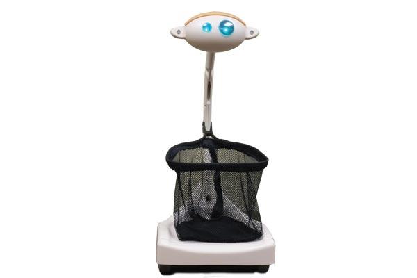 Robot Budgee